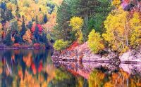 Fall in Algonquin Provincial Park