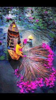 Loads of color