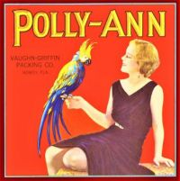 Themes Vintage ads - Polly-Ann Parrot Orange Citrus Fruit Crate Label