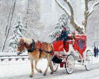 winter71
