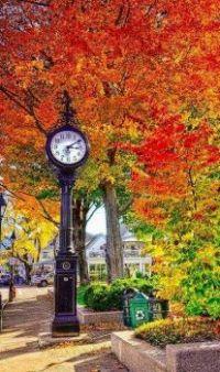 Vintage Clock (828)