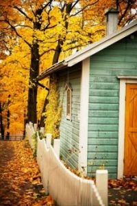 Autumn Cabin In The Woods