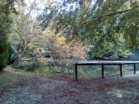 Agostyáni Arborétum 1