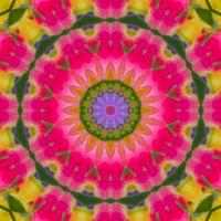 kaleidoscope 337 pink small