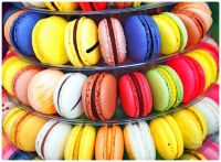 Macaroon Carousel of Colour