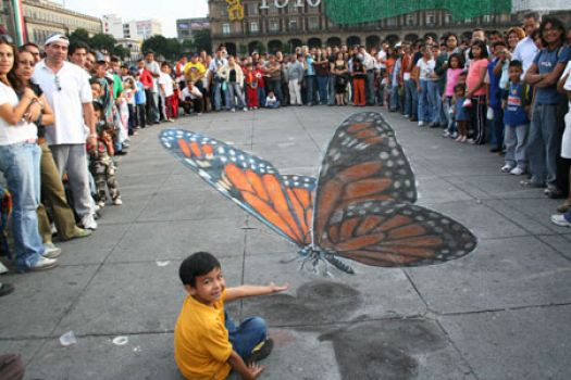 Butterfly - 3D Chalk Art - By Julian Beever