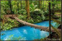 ~Tenorio Volcano National Park, Costa Rica~