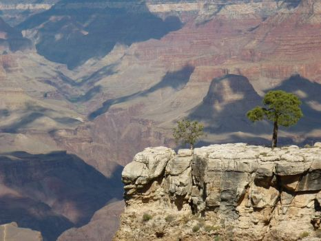 """THEME:  """"National Parks""""  The Grand Canyon 2009  (Can post with more pieces, if you wish)"""