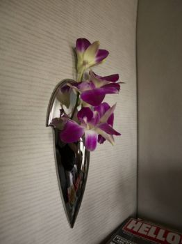 Fresh orchids in the suite on the a380