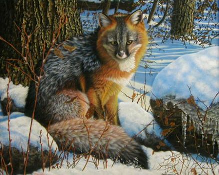 Sitting Fox Silent Grace