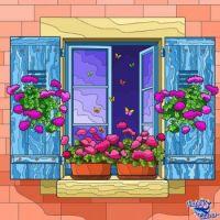 MY WINDOW SILL
