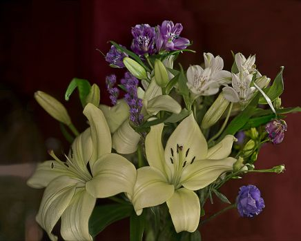 Lilies and Freesias