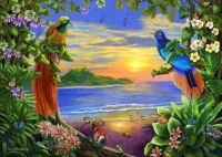 Tropical bird paradise!