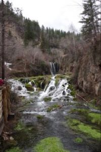 Black Hills Waterfall