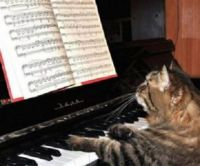 "Why are we rehearsing ""O Holy Night""?  Lucy never hits that high note..."