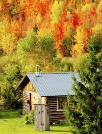 Cabin in the Mountains....