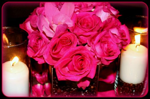 Pinknblack Petal Perfection