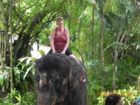 Me riding elephant in Thailand