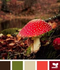 Mushroomed Autumn