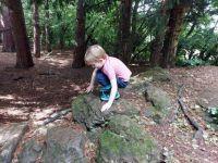 Piggly exploring Jarn Mound