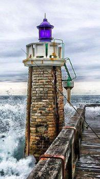 Lighthouse 239