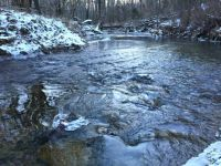 Icy Guist Creek-Selby County-Kentucky-3264x2448
