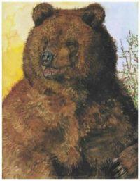 Bear ~ Jerry Pinkney