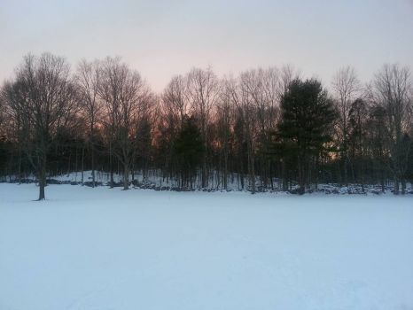 Winter at Carter Hill