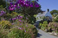 Guernsey, Channel Islands_Courtesy of VisitGuernsey