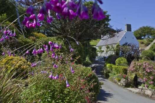 Guernsey, Channel Islands_Courtesy of VisitGuernsey