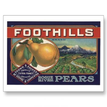 Foothills Pear