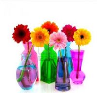 Coloured vases 7!!!