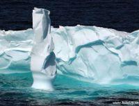 ice berg Flatrock NL
