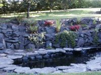 Different View of Pond
