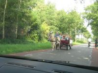 Holland 2014 072