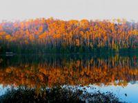 Mink Lake