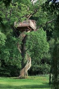 Super-duper Treehouse