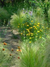 spring garden 012