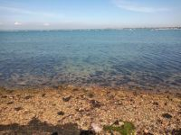 Clear Water Langstone Harbour