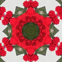 kaleidoscope 52 red star small