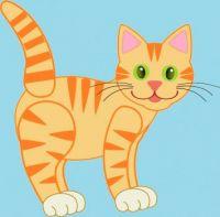 CA 497 - Ginger cat (Smaller version)