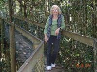 tree top walk at O`Rileys