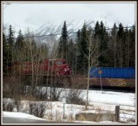 Train through Canmore