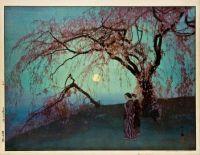 Kumoi Cherry Trees (1920)