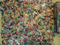 this puzzle has 500 pieces 014