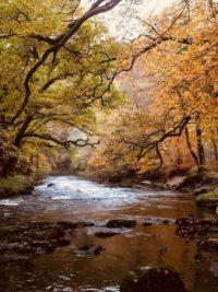 Dartmoor, England