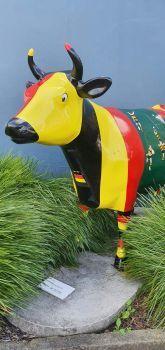 Mooloo cow