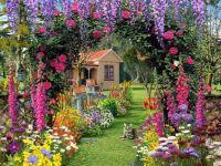 summer-garden-flower