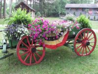 Wagon of Blooms