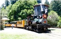 Roaring Camp & Big Trees RR